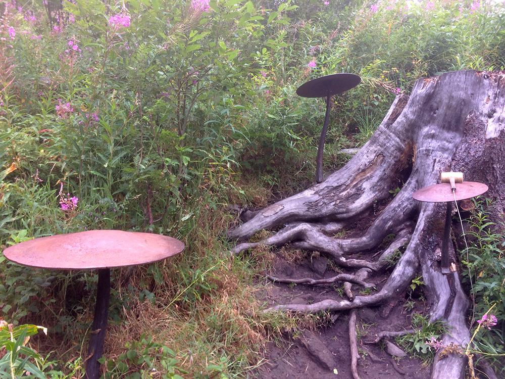 Märchenhafte Umgebung bei den Klangstationen auf der Familienwanderung auf dem Klangweg Toggenburg