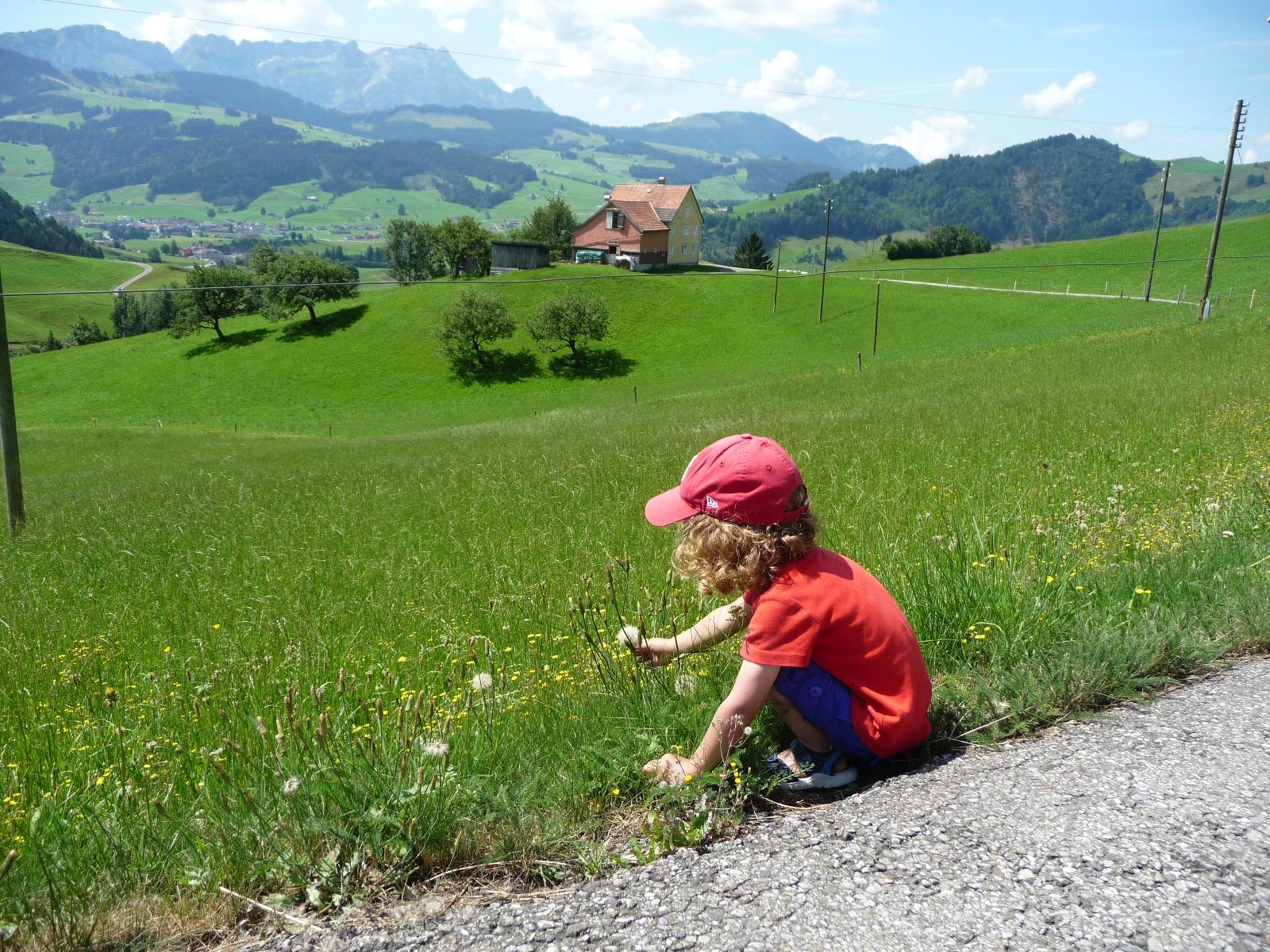 Wunderschöne Appenzeller Natur auf dieser Familienwanderung in Appenzell.