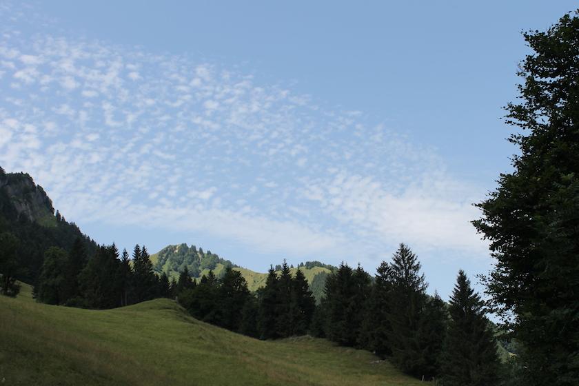 Herrliche Natur auf den Wanderwegen der Ostschweiz.