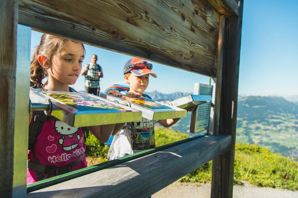 Auf Golmis Forschungspfad am Bewegungsberg Golm entdecken die Kinder an verschiedenen Stationen die Flora und Fauna des Montafon