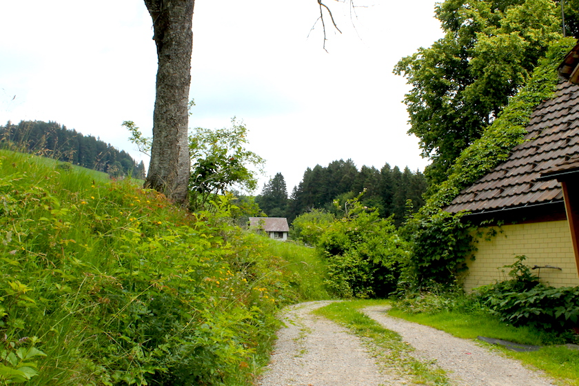Wandern im Appenzellerland auf dem Rätselweg in Schwellbrunn