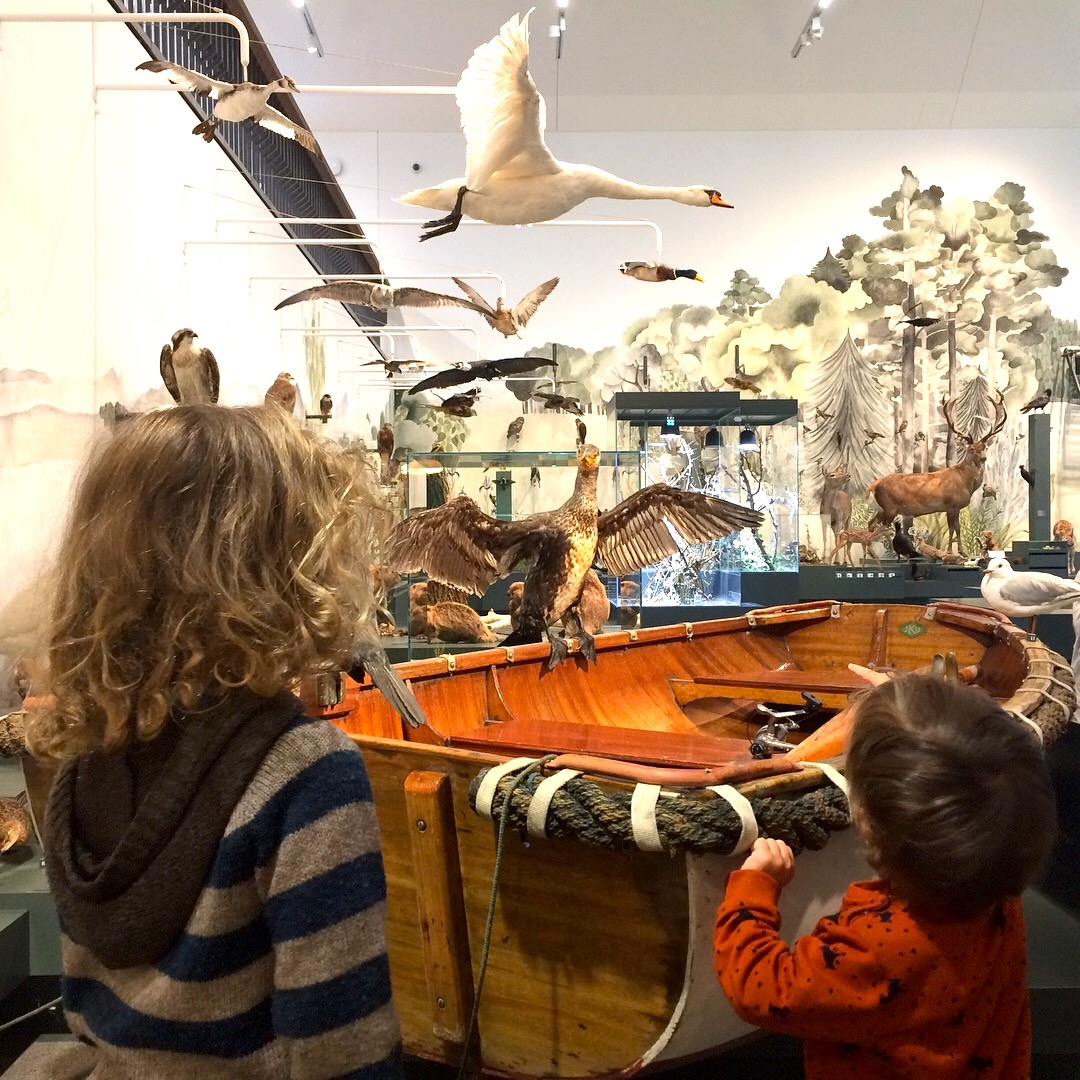 Das Naturmuseum in St.Gallen ist ein Kindermuseum der Superlative. Einheimische Tiere und allerlei Infos zur Flora und Fauna. Ein interaktives Kindermuseum zum Verweilen.