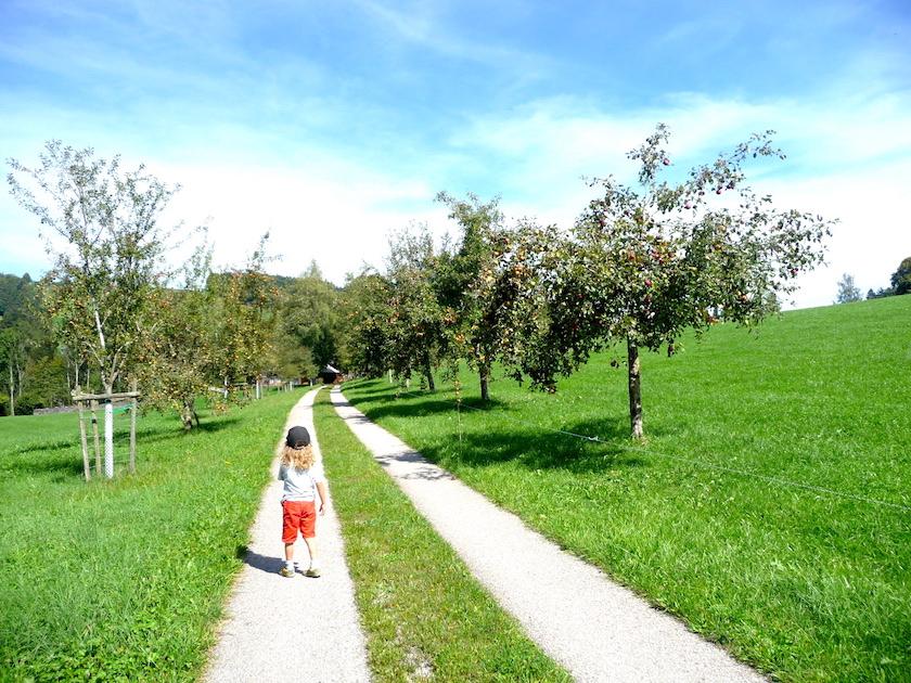 Wunderschöne Landschaft im Neckertal auf dem Chnobelweg Hemberg
