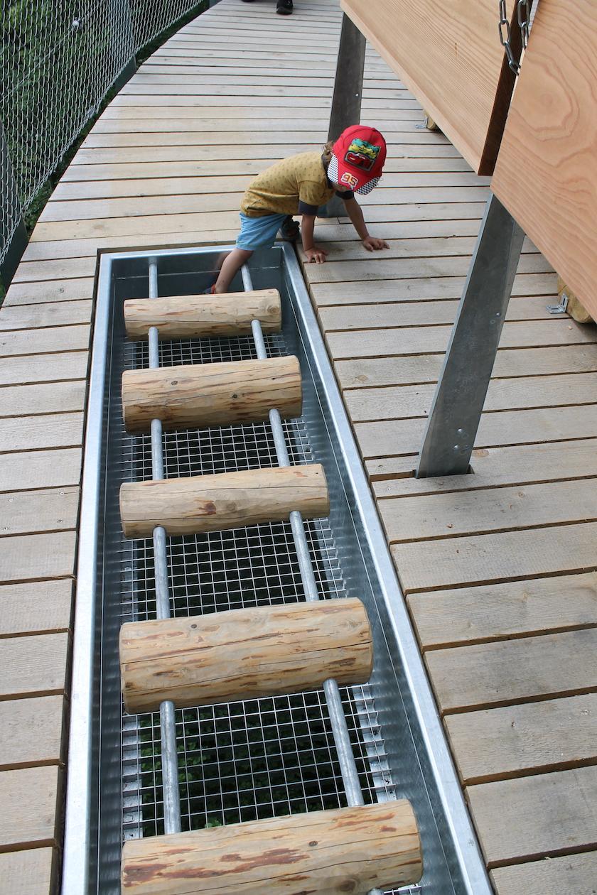 Erlebnisstation mit Holztrümmeln auf dem Baumwipfelweg