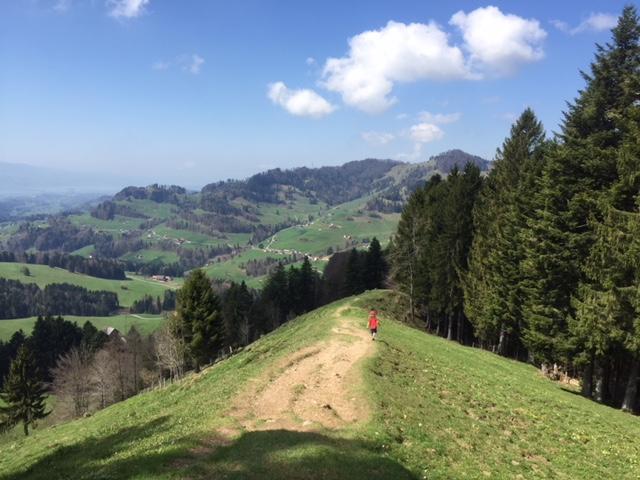 Aussicht Zürich See vom Atzmännig aus